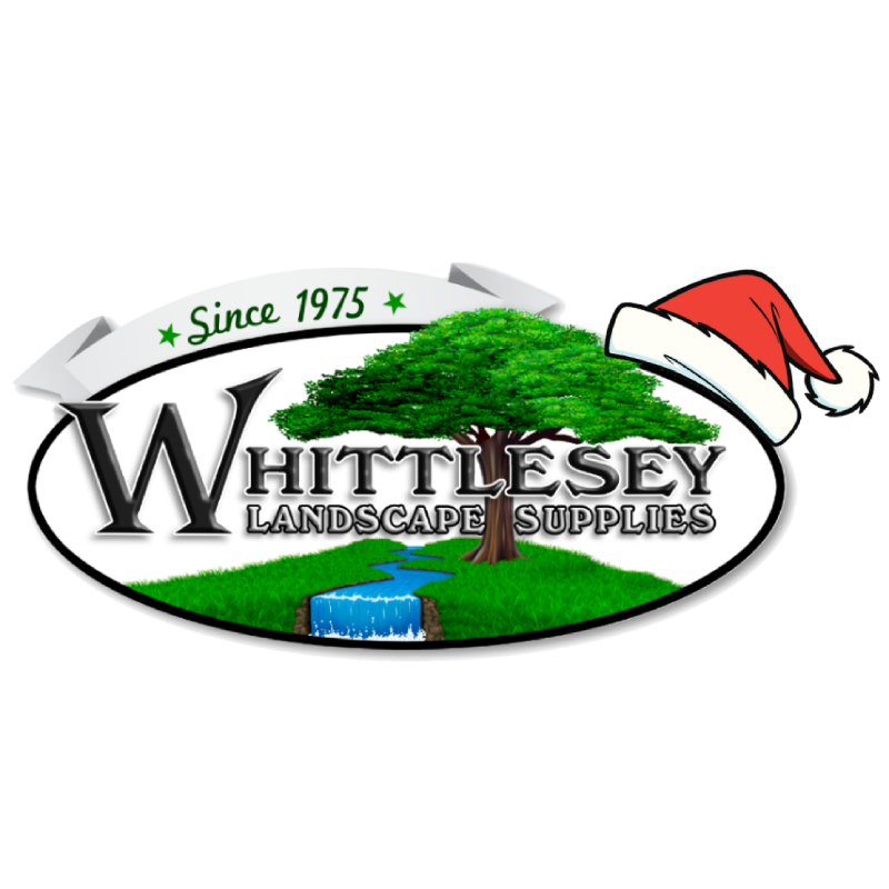 Whittlesey christmas