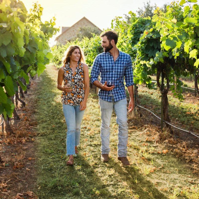Activities wineries 2x