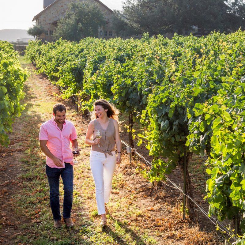 Winery 6 3x